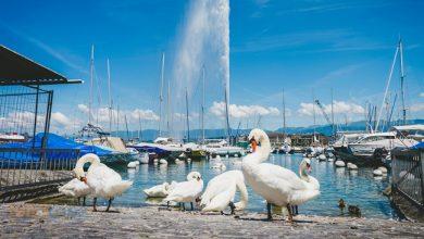 Photo of Cenevre İsviçre Hakkında Bilinmeyenler